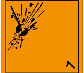 Afbeelding van ADR 1.0 explosive label, 100mm x 100mm, 1.000 labels, core 76mm